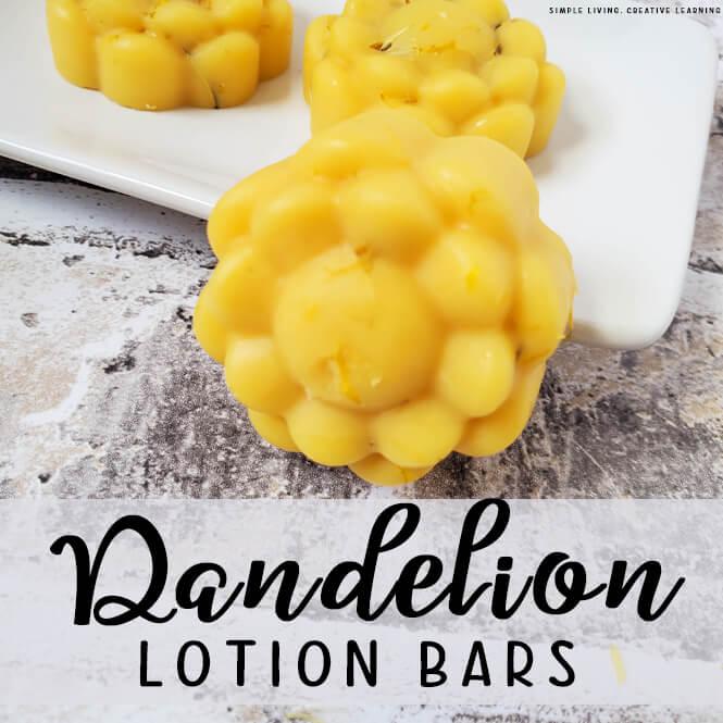 Homemade Dandelion Lotion Bars