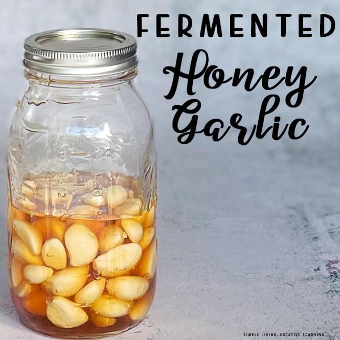 Fermented Honey Garlic