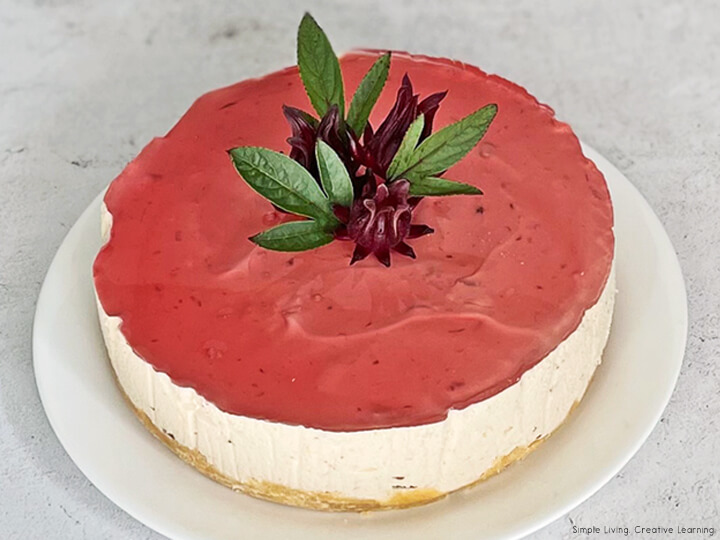 Rosella (Hibiscus) Cheesecake