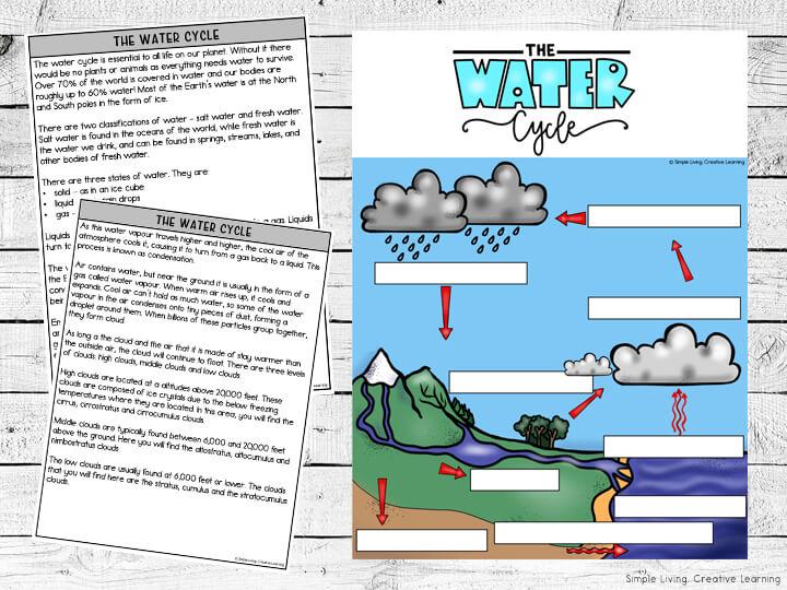 Water Cycle Printables