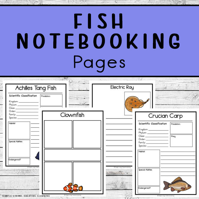 Fish Notebooking Pages