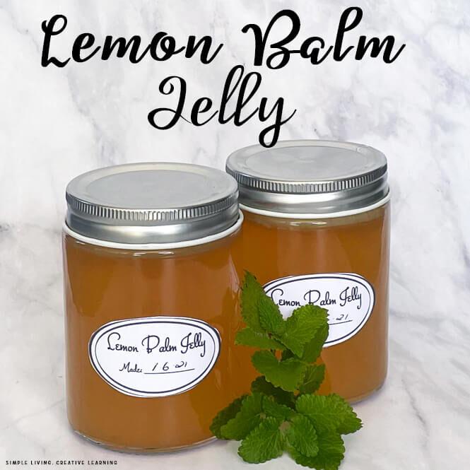 Lemon Balm Jelly