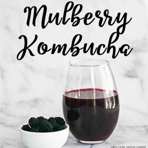 Mulberry Kombucha