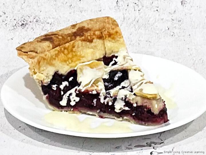Homemade Mulberry Pie