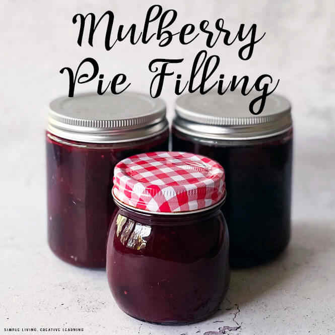 Mulberry Pie Filling